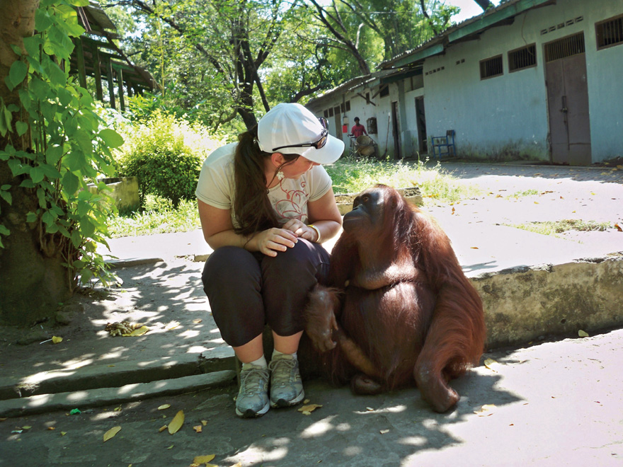 Improve Your Career Prospects Now