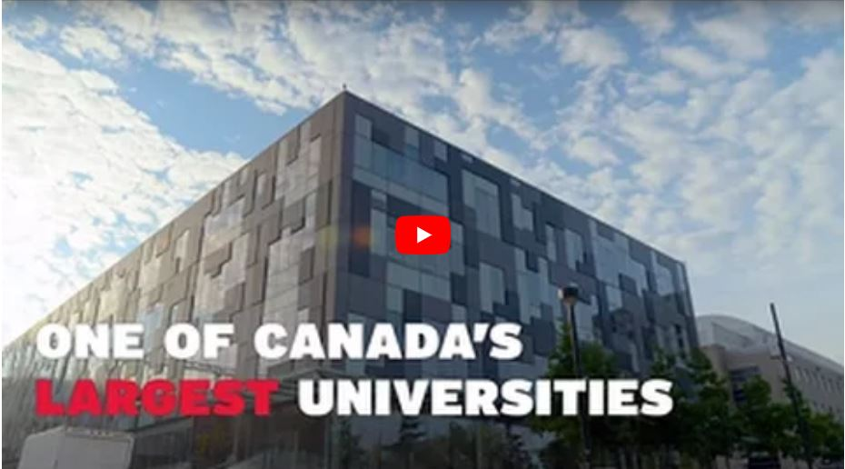 Take a look inside York University! [VIDEO]