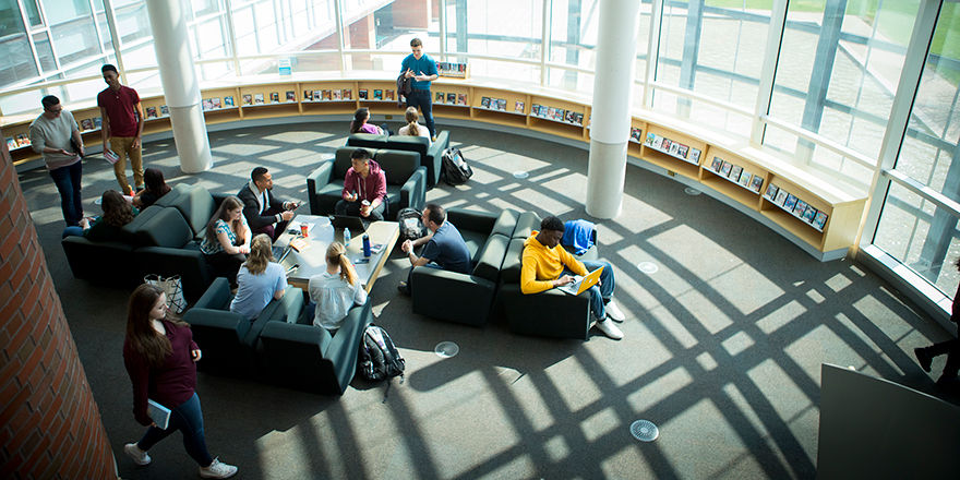 Students enjoy the Ridgeback life in the spacious, sunny Ontario Tech University Campus Library.