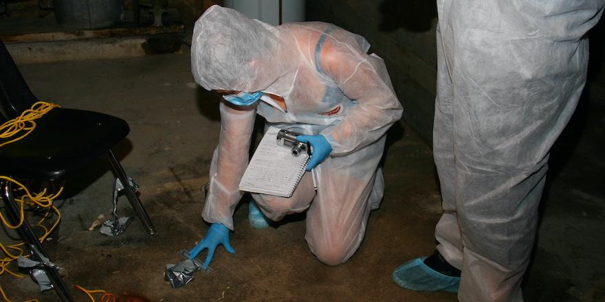 Investigate Crime Scenes at Trent University